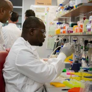【新型コロナ関連情報】全世界が取り組んでいるワクチンの開発と生産
