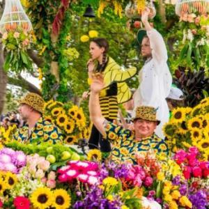 たくさんの花が咲き乱れるトゥーンバの花の祭典!