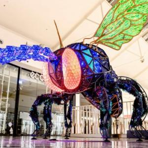 ロビーナタウンセンターに現れた巨大昆虫!