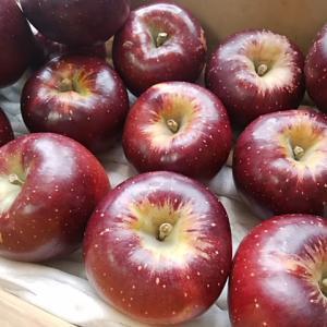 甘いりんご秋映