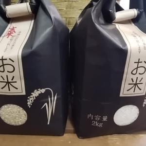 甘い無農薬米こしひかり入荷