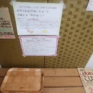 平飼い卵 無農薬米が完売 今週入荷します