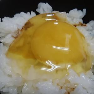 和歌山の平飼い卵 たまごかけご飯