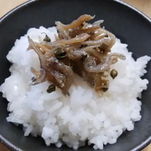 炊きたてご飯 ちりめん山椒 美味しくないわけがないでしょ