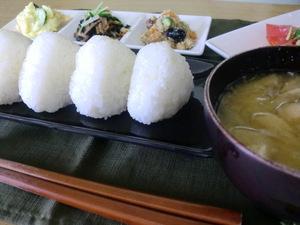 無農薬米こしひかり入荷 おにぎりが最高に美味い米