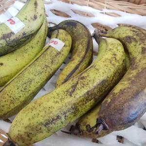 大量のシュガースポット 見た目悪い 国産バナナの甘さが増加中