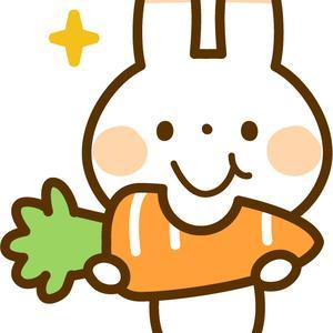 栄養価1.5倍 甘くてサイズが揃っている 北海道無農薬にんじん まもなく入荷開始