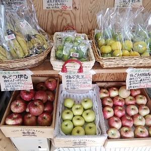 秋の果物 3種のりんご みかんが入荷です