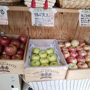 3種のりんご 一番人気はどれだと思いますか