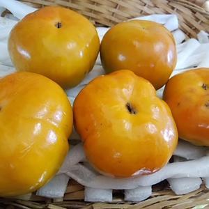 秋の味覚 刀根柿を入荷させてみたんだけど 本当は四つ溝