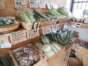 葉物の地野菜が盛りだくさん