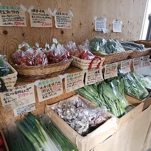 週末もフィールの野菜と総菜 定休日前でも採れたて作りたて鮮度抜群