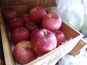 極甘りんごお買い上げありがとうございます ササニシキ白米23日入荷