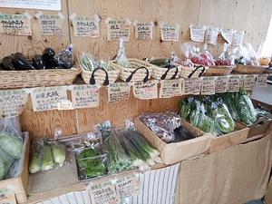 土曜日も鮮度抜群な夏野菜と果物 豊富に入荷でにぎやか