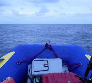 大雨後のチャレンジ釣行 vsアオリイカ&青物