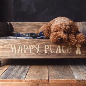 【犬のベッドをDIY】100均すのこでワンコのひんやり冷たいベットの作り方!~すのこの使い方と完成後の愛犬チロルの使用レポ編~