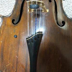 世のコロナ騒ぎは関係なく、普段通りの生活をして弦を替えました。