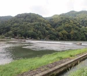 嵯峨嵐山文華館で鳥の絵を楽しむ