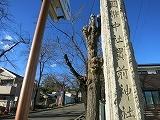 上野国一之宮 貫前神社