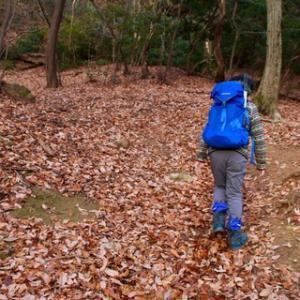 藤原岳に行って来ました^ ^