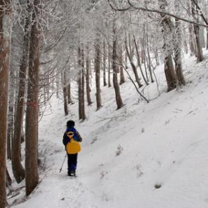 霧氷まつりの三峰山へ行ってきました^ ^