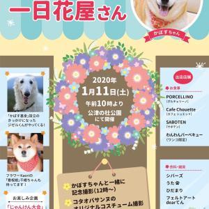 かぼすちゃんの1日花屋さん2020開催のお知らせ