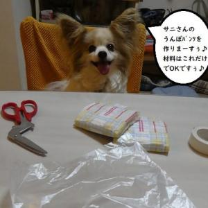 うんぽパンツ作る!