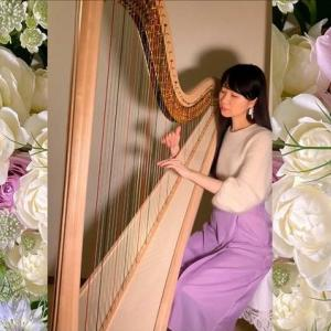 世界的に著名なハープ奏者様に、イタリアのロートアイアンランプをお選びいただきました♪