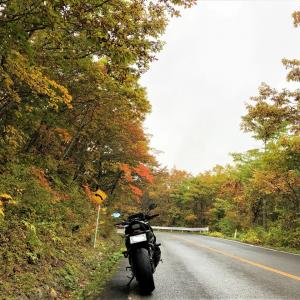 South Tohoku Touring of Autumn Leaves Vol.2