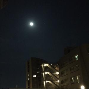 富山移住記Vol.29 台風被害・・・