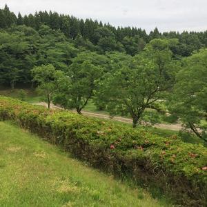 富山移住記Vol.75 新たな出発