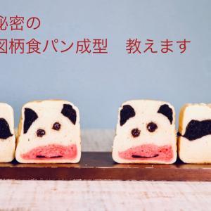 干支パン 牛乳パックで焼く うし君食パン ステイホームにピッタリ 動画レッスン