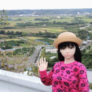 細江の田園風景