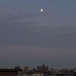 2019年12月9日の月と金星