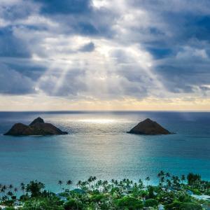 【カバラの魔法 117】自然は神のファッション