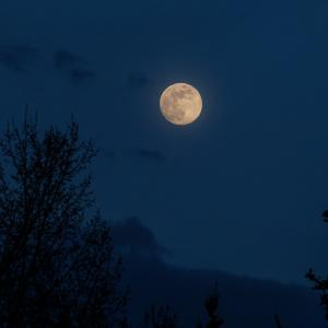 [コピー]【明日の満月は半影月食!】バックムーン(牡鹿月)…7月5日(日) 13:44