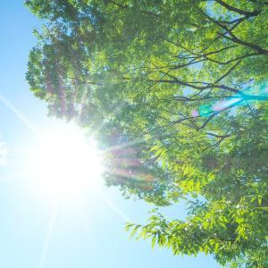 毎日酷暑!東京五輪に世界からブーイング→権力・利害の拡大のせいでは?