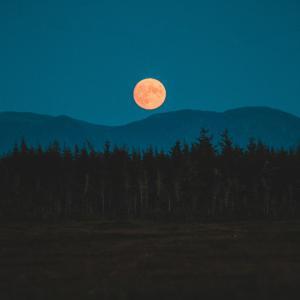 中秋の名月イブにお月様を楽しみました。
