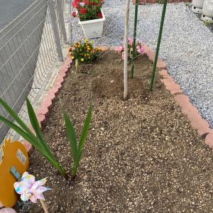 花壇を改善しました。