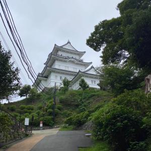 小田原城址公園に行きました。
