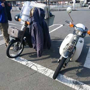 弥生三月カブ散歩
