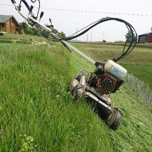 土手草刈りとショウブ湯