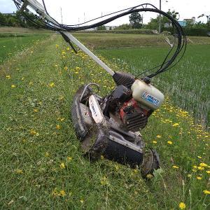土手草刈り