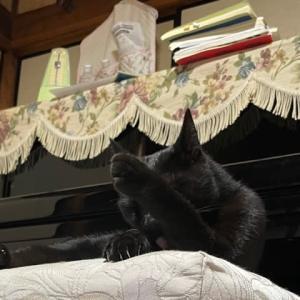 黒ピアノの前のジジィ