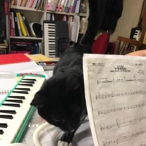 鍵盤ハーモニカ練習の応援です