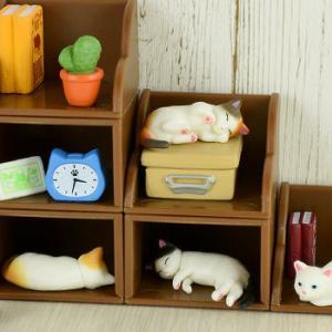 「棚猫」棚と雑貨とくつろぐ猫がセットでミニチュアフィギュアになってガチャに登場!