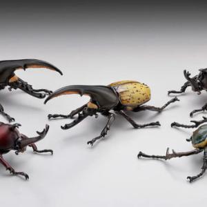 甲虫の王様「カブトムシ」がガチャフィギュアになった!「甲虫の王様カブトムシ大全」