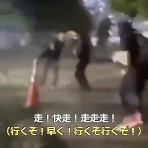 【動画】米ホワイトハウス付近の抗議現場で飛び交う中国語!暴動の背後に中共の影 [海外]