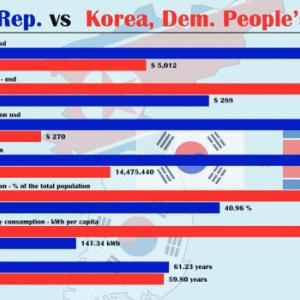 【動画】韓国 vs. 北朝鮮、国力の比較(1970~2018)を「動くグラフ」にしてみた!