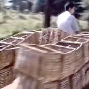 【動画】中国あるある自転車過積載、芸術の域だった80年代の様子がこちら!